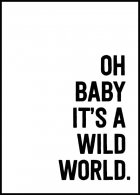 Oh baby it's a wild world Juliste