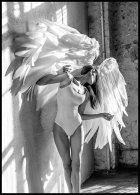 Wings Juliste