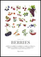 Berries Juliste