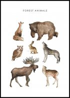 Forest Animals Juliste