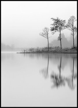 Stillness Juliste