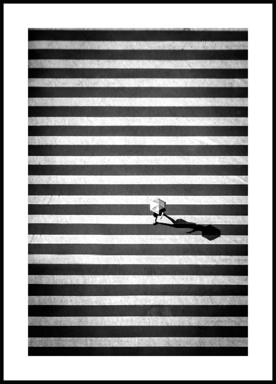 Crossing Stripes Juliste