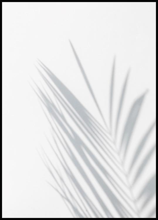 Palm Leaf Juliste